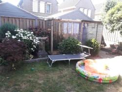 renovatie achtertuin