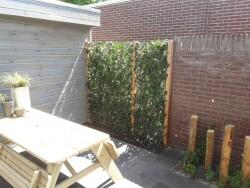 renovatie kleine achtertuin